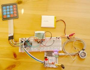 DIY Phone prototype